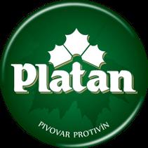 Platan Pivo